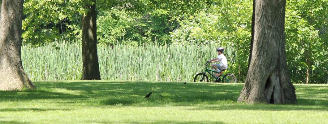 Humboldt Park Watch Endorses the Proposed Humboldt Park Beer Garden ...